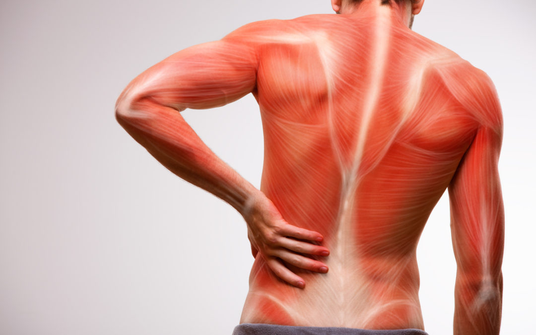 Ultimate Guide to Relieve Sore Muscle Pains